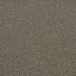 Ray Skin Fabrics