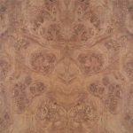 Acanthus Oak Burl Sample