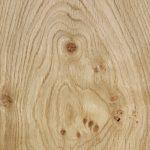 Acanthus Pippy Oak