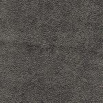 Ray skin No.18 Fabrics